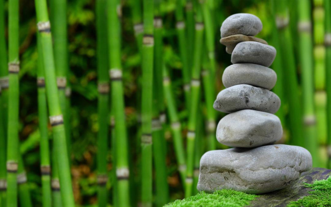 Kostenloser Infotag zur Ayurveda-Medizin